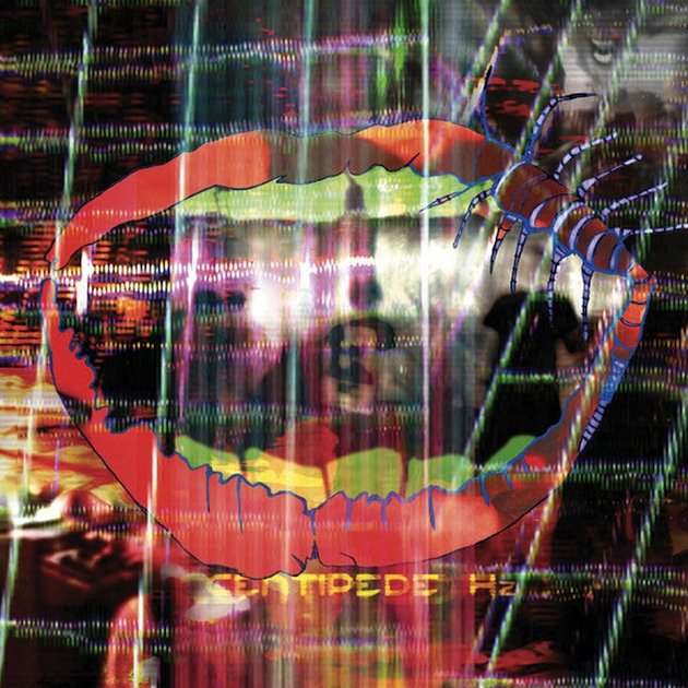"ANIMAL COLLECTIVE ""Centipede Hz"" CD"
