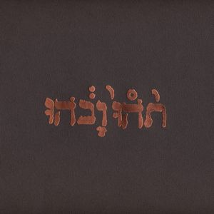 "GODSPEED YOU BLACK EMPEROR! ""Slow riot..."" VINYL"