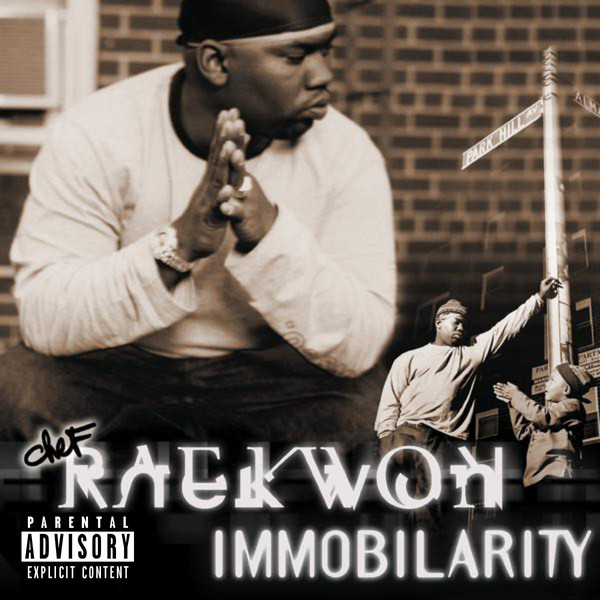 "RAEKWON ""Immobilarity"" DOUBLE VINYL"
